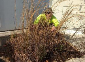 Preventative Maintenance | WNC Roofing