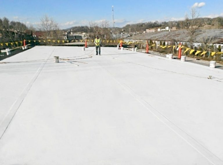 Commercial Roof Protection