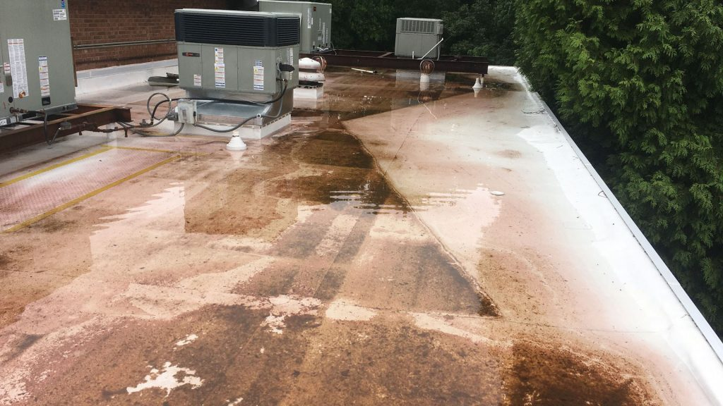 commercial roof standing water